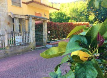 alt = bilocale con giardino